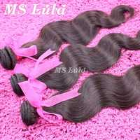 Unprocessed virgin indian hair body wave 10pcs lot Wholesale Factory price with Free Shipping ms lula hair