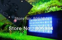 cheap aquarium light