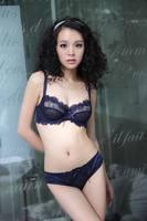 Women's Sexy Bra Sets 2014 Fashion Deep V-neck Transparent Gauze Plus Size Embroidery Ultra-thin Underwear Brief Panties  32-42