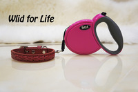 Decorative Cat Dog Leash and Collar Set / High Quality Genuine Leather Collar + 3m Automatic Retractable Leash