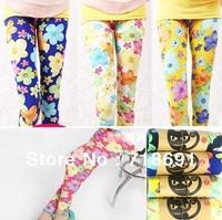 In Stock! Girls Flowers Prints Leggings, Kid wholesale fashion leggings children candy color wear 5pcs/lot