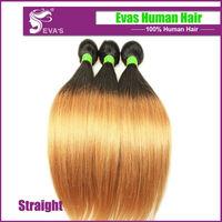 6A Top Grade Eurasian Virgin hair free shipping, ( Natural wave ) loose wave hair extension,3pcs lot Virgin Eurasian Hair