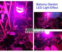 Free Shipping 7W Led Grow Plants Lamp Lighting AC85-265V LED Plant Grow Light CE/ROHS LED Hydroponics Spotlight 10pcs/lot