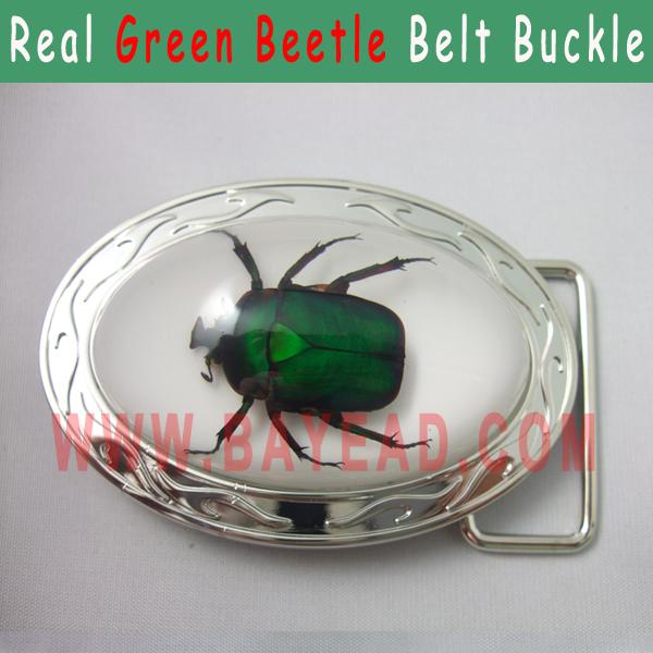 Real Big Green Chafer Beetle in Resin Metal Men Belt Buc