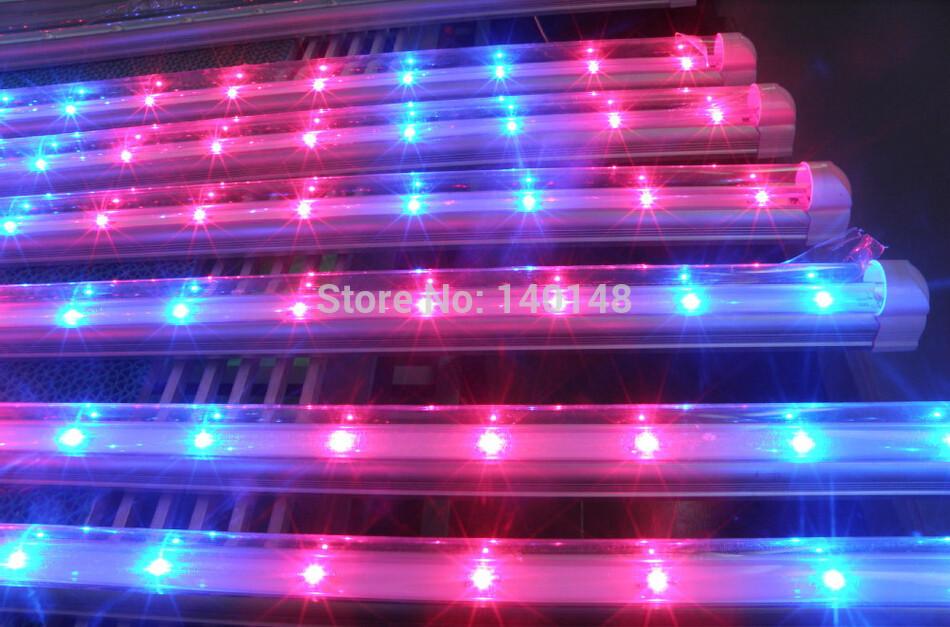 De plus en plus avec des lumi res fluorescentes magasin for Lampe pour plante d interieur