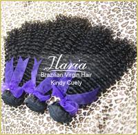 Rosa Hair Products 2Pcs/Lot Brazilian Human Hair Kinky Curly Virgin Hair Weft 100% Unprocessed Human Hair Weaving Free Shipping