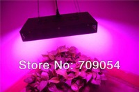 New 2013  Chinese 2pcs 165W led grow lamp for plants