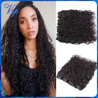 Malaysian Wet and Wavy Virgin Hair 3pcs/lot Modern Show Hair Malaysian Virgin Hair Water Wave Unprocess Natural Wave Human Hair