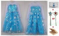 2014 Limided Pre-sale Cosplay Costumes Frozen Princess Elsa Fancy Girls Dresses Movie Summer Girl Dress Dresses For 2-7Y