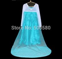 1pcs retail,free shipping  2014 hot  frozen dress Anna Elsa coronation ballgown summer dress for girl