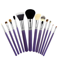 100% Brand New 12PCS Essential Kit - Make Me Crazy makeup brushes Kits sets with cup holder