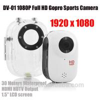 SPORTS CAMERA 1920*1080P FULL HD EXTREME SJ1000 sport DV action camera DV Helmet Camera Motor Mini Car DVR Underwater 30M DV-01