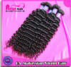 Malaysian  virgin hair curly wave human hair  fast shipping