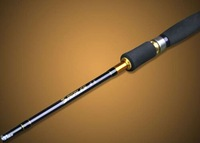 2012 new product spinning sea rod carbon fiber ultra light rod
