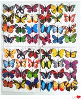 Promotion!!! Small size PVC fridge magnets simulation butterflies muti-color decoration sticker mix 120pcs\lot DHL Free shipping