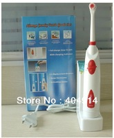 Rechargeable revolving Electric toothbrush Oral Hygiene family dental care tooth brush set with Waterproof handle