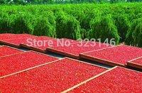 FREE SHIPPING!!  1 KG, Top Goji Berries Pure Bulk Bag Certified ORGANIC,Green food