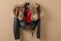 Women's short coat genuine sheep skin  with big raccoon D2 collar square female 2 Golden zipper leather coat