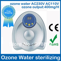 water ozone sterilizing air purifier 3188 AC230V AC110V Ozone output 400mg/H Fruit disinfection,free shipping wholesale