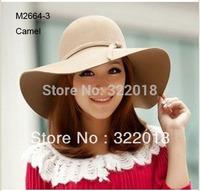 Wholesale Hats 2014 Special 6pcs Plain Women Wool Hats Stylish Cloche Big Brim Floppy Felt Hat Bowler Ladies Caps Autumn Winter