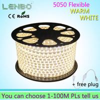 Wholesale10M 5050 LED strip 220V 230V 240V white/warm white Waterproof flexible SMD led strips IP65 + Free Plug