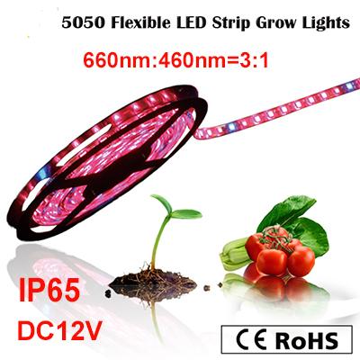 Frete grátis LED cresce a luz , à prova d'água IP65 growlight tira flexível para hidroponia , estufa, jardim interior(China (Mainland))
