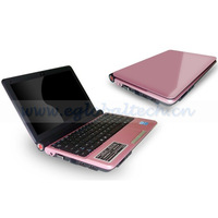 "10.2"" Mini Notebook CPU Intel Atom D2500 1.8GHz Dual Core Smart Laptop Computers 2GB DDR3, 160G HDD Windows 7 O/S School Laptop"
