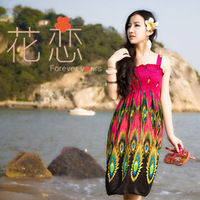 New Design 2014 Free shipping Bohemia Indigenous flavor long style brace maxi beach dress