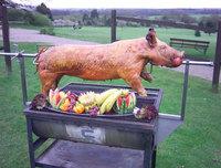 pig rotisserie motor  Heavy Duty - 80kg load Stainless Steel pig Spit roast rotisserie motor