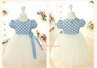 Wholesale New  kids clothes girls dress dots princess dress,baby girl cute dress with flowers ball gown girls dress