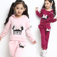 High Quality ! 2014 New Sport Style Girl Suit/ Long Sleeve Hoodie +Long Pants/ Children Knitted Sportswear suit set b14 SV006224