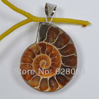 Ammonite Fossil Inlay Pendant Jewelry Free shipping S560