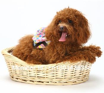 InnoPet Rattan Cradle Pet Bed Dog Bed Cat House