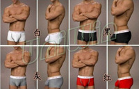 (6pcs/lot) 93% Modal Mens Underwear Mens Stereo U Shape Health Care Boxers Shorts