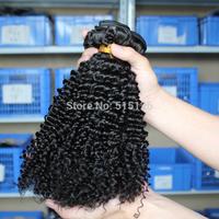 Free Shipping rosa hair products Unprocessed Malaysian virgin hair Kinky Curly hair weaves 3pcs/lot human hair natural color