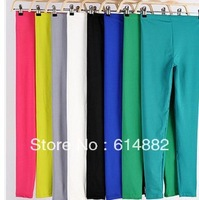 Spring  Autumn Women's Fashion Leggings Candy Color Leggings Empire Elastic Leggins Wholesale LG06