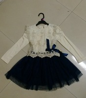 Free Shipping 1PCS Retail New Arrival Fashion Embroidery Lace Children Girls Tutu Dress For Autumn Spring Pink Navy Blue