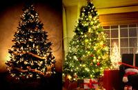 LED Christmas Light 100M 600Leds AC220V 7colors RGB white Led String  light For Christmas Tree light