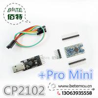 Free Shipping 1LOT=2PCS=1PCS BTE13-007 CP2102 Serial Converter USB 2.0 To TTL +1PCS BTE14-02 Pro Mini
