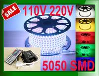 Outdoor lighting led lamp 220v strip strips light 110v 120v 220v 230v 5050 SMD + IR 44key wireless remote controller