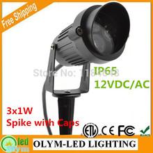 césped iluminación ac110v/dc12v 220v impermeable de alta potencia al aire libre jardín lámpara del punto llevó pico jardín proyector de luz ip65 3w 2 piezas(China (Mainland))