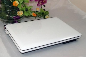 Hot sales 10.2 inch laptop D2500 1.8G Memory 1GB/2GB HDD 160G/320G netbook wifi camera mini computer