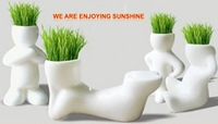 REAL Grass 4PCS New Arrival series of  real planting grass little vase Good for gift decoration 0031