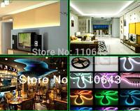 SMD 3528 RGB 5M Waterproof 300 LED Flexible Led Strip Light + IR Remote+ EU Power Adapter Free Shipping 2727 2650