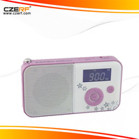 Free Shipping Panda DS-111  LED Screen Digital Radio with USB TF Card