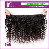 Free shipping Human hair weave curly virgin hair,Mongolian kinky curly virgin hair, 2 or 3 pieces lot Mongolian Virgin Hair