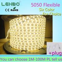 5M 5050 LED strip 220V 230V 240V  Christmas Lights  white/warm white Waterproof flexible SMD led strips IP65 + Free Plug