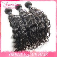 Mocha Hair Products Brizilian Natural Wave Curly 4pcs Lot 8-30inch Ms Lula Cheap Brazillian Water Wave Wet and Wavy Hair Bundles