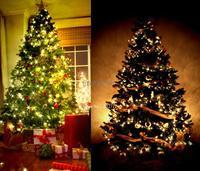 Christmas 2014 50M 300 LED Warm White Decorative Wedding Fairy Christmas Tree Party Twinkle String Lights EU TK0583