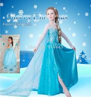 New 2014 Frozen Dress Elsa & Anna Summer Dress For Girl Princess Dresses Brand Children's Clothing cartoon baby Kids Wear